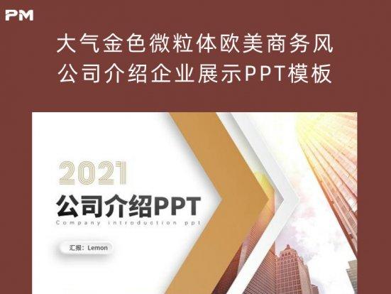 大气金色微粒体欧美商务风公司介绍企业展示PPT模板